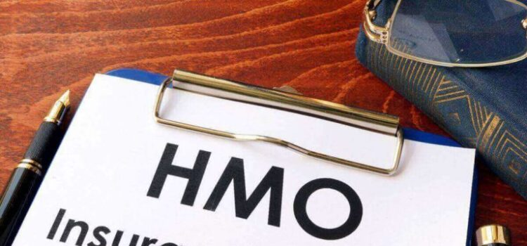 See The Top 10 Health Maintenance Organizations (HMOs) in Nigeria (2021)