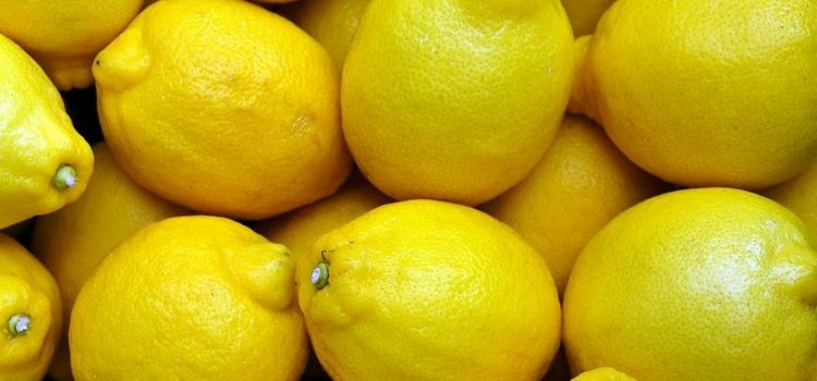 How To Begin Lemon Farming In South Africa | A Working Guide