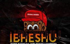 Sponge Wodumo – Ibheshu ft. Mampintsha & Babes Wodumo SONG ARTWORK
